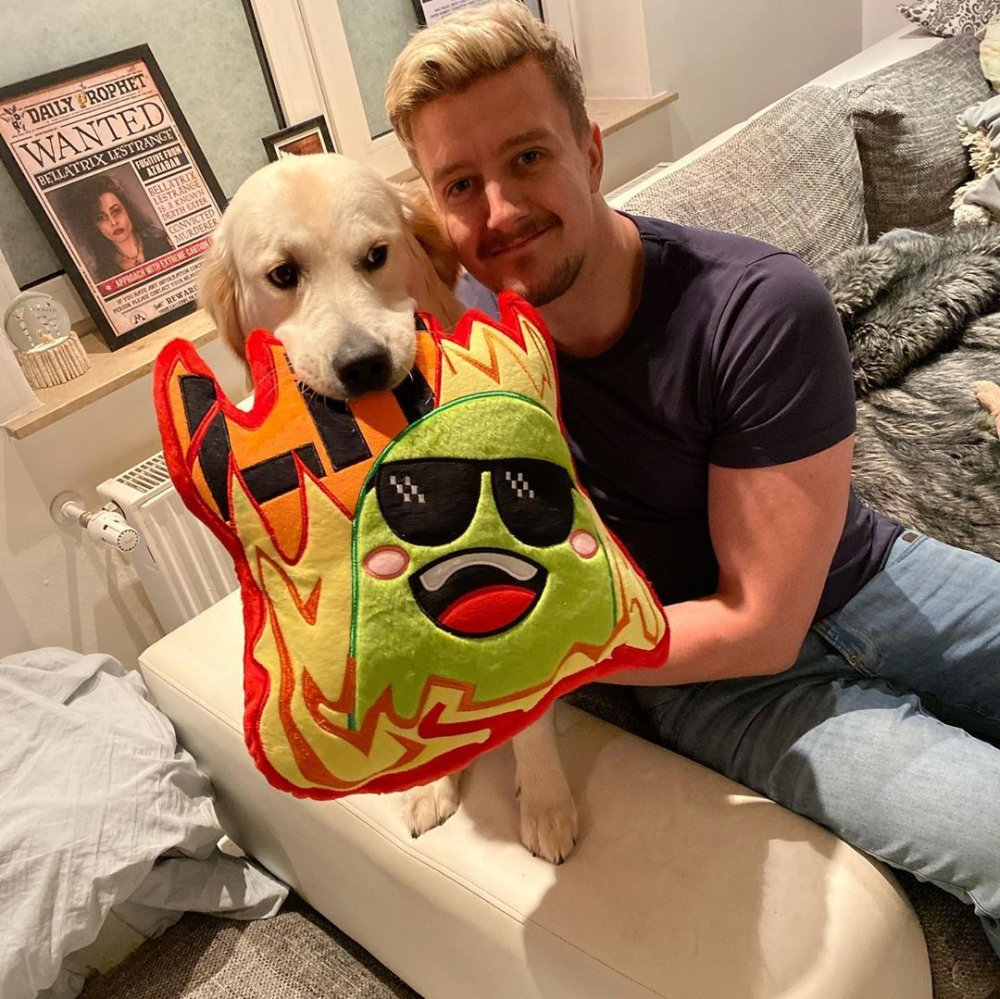 Perrick Pickle Fire Emote Pillow with Dog