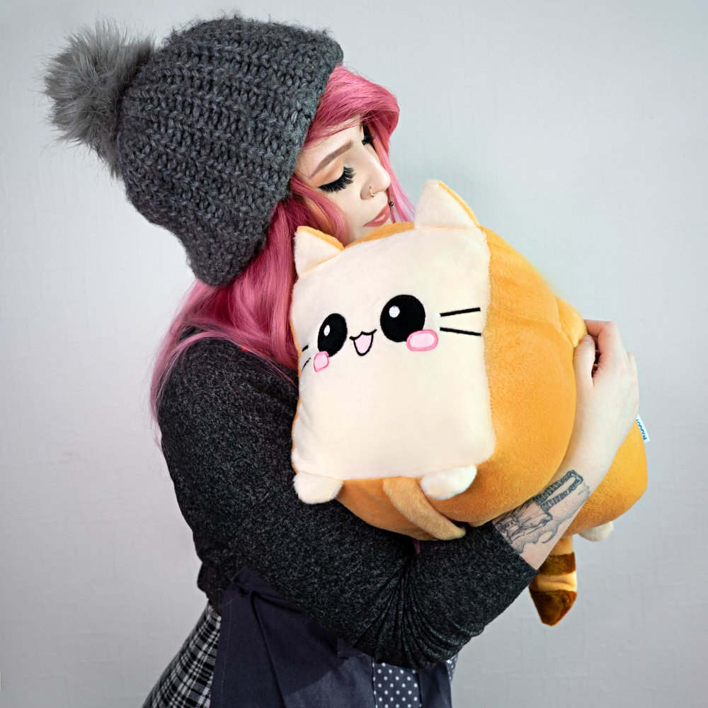 Toast Cat Pillow Girl Toy